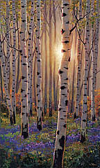 Luminous Aspens
