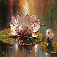 Pejman White Lily 16x16 oil